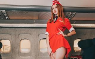 Домосед летит в Москву